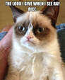 Grumpy cat ray rice