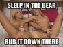 sleep in the bear